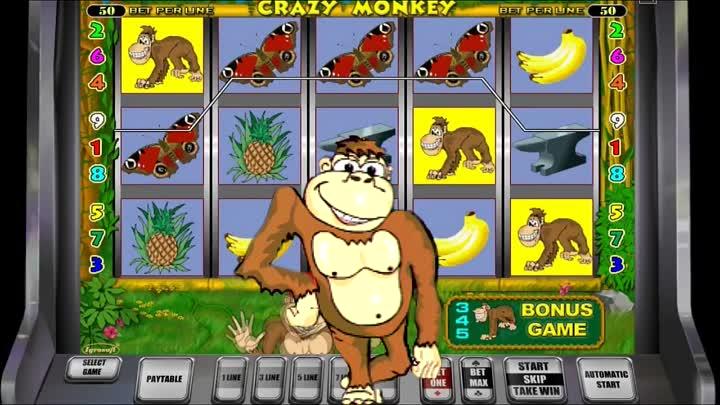 казино вулкан обезьянки